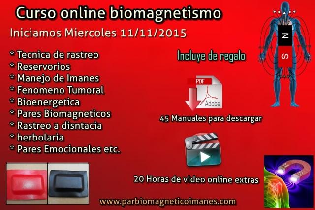 curso biomagnetismo