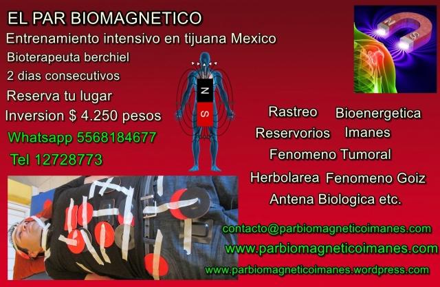 tijuana biomagnetismo